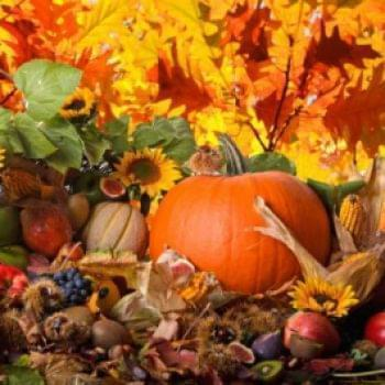 Отчеты - Октябрь | Фонд Инна