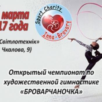 Великі проекти - Чемпіонат міста Броварів з художньої гімнастики | Фонд Інна