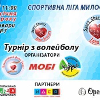 Великі проекти - Турнір по волейболу | Фонд Інна