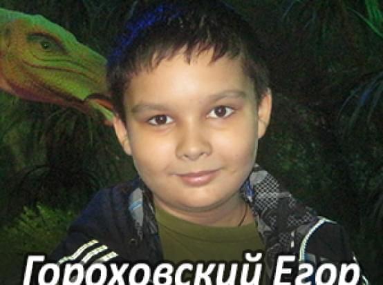 Им нужна помощь - Гороховский Егор Леонидович | Фонд Инна