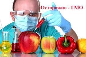 Стремление жить - Продукты С ГМО Провоцируют Рак | Фонд Инна