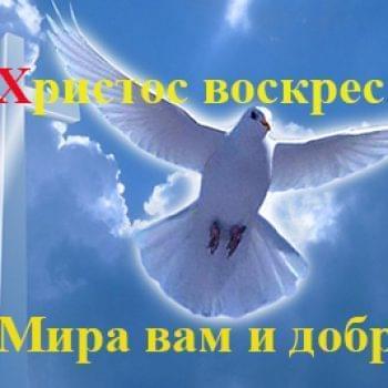 Новости - С Пасхой Христовой, друзья! | Фонд Инна