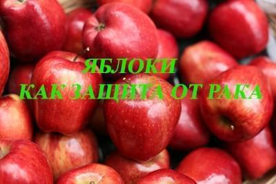 Прагнення жити - Яблука як засіб проти раку   Фонд Інна