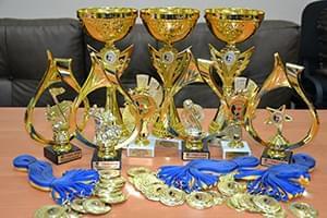 """Новини - На фестиваль  """"Inna-Brovary """" заявилося кілька сотень учасників з багатьох країн!   Фонд Інна"""