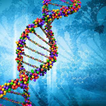 Стремление жить - Древняя защита от рака скрыта в ДНК | Фонд Инна - Благотворительный фонд помощи онкобольным