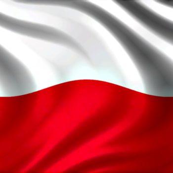 Новини - Польща серед учасників фестивалю | Фонд Інна