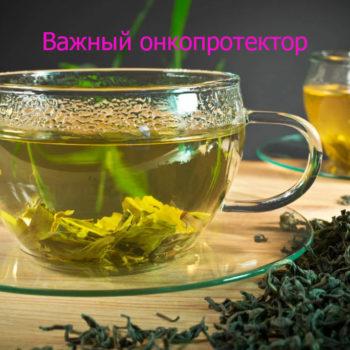 Прагнення жити - Зелений чай захищає від раку | Фонд Інна - Благодійний фонд допомоги онкохворим