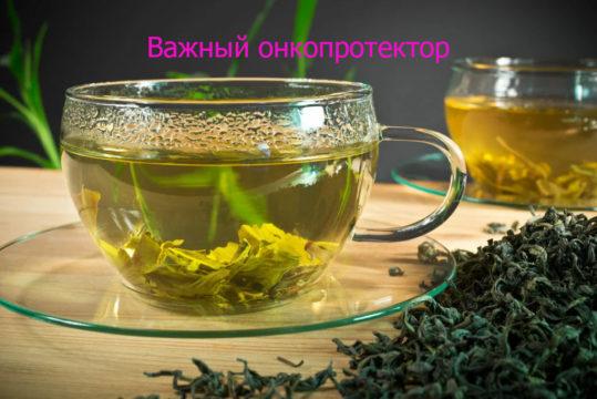 Прагнення жити - Зелений чай захищає від раку | Фонд Інна